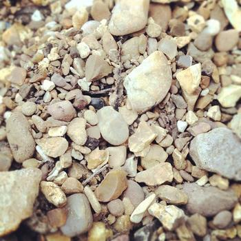 Some Tips to Edge Gravel Walkways